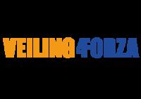 Benefietlunch & Veiling4Forza