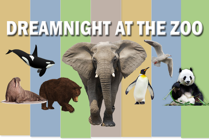 Dreamnight at the Zoo Energy4All